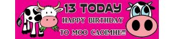 13th Birthday Party Banner