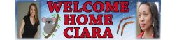 Welcome Home Themed Banners