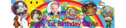 1st Birthday Party Banner 2