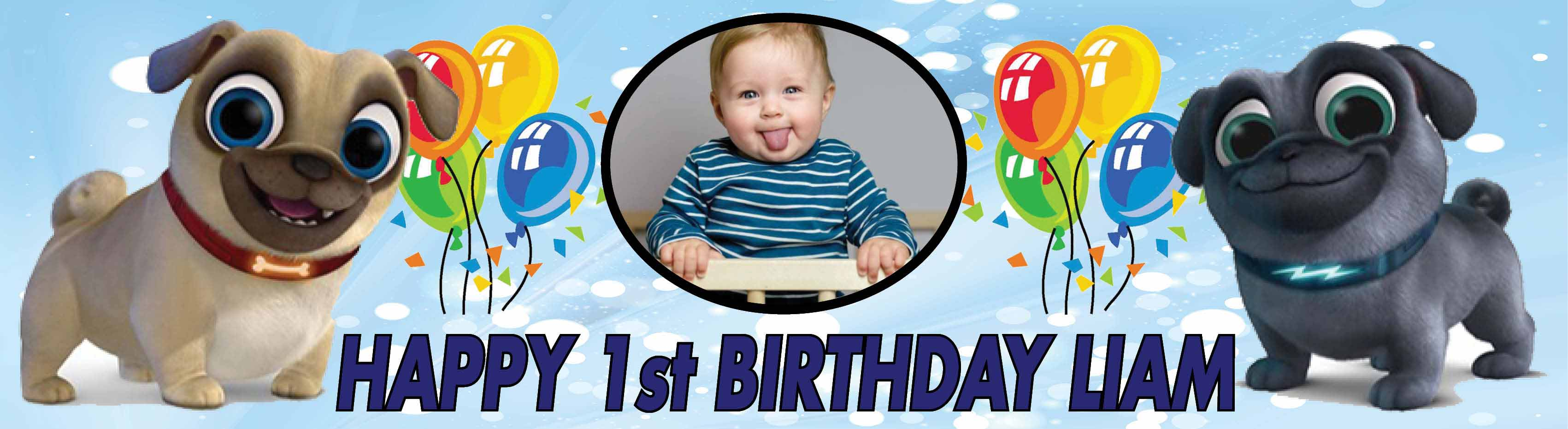 1st Birthday Party Banner 24